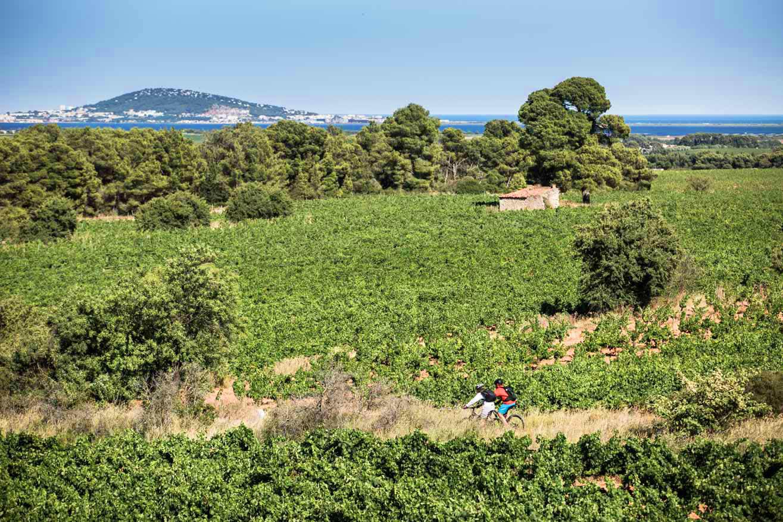 GTMC millau cap d'agde olivier octobre photographe montpellier