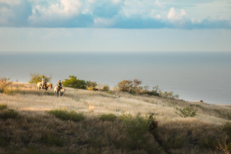 ÎLE DE LA RÉUNION TOURISME Comité régional de tourisme de la Réunionphotographies olivier octobre montpellier